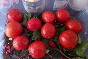 kvashenye-pomidory-kak-bochkovye