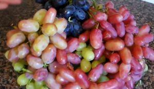 marinovannyj-vinograd-bez-sterilizacii3
