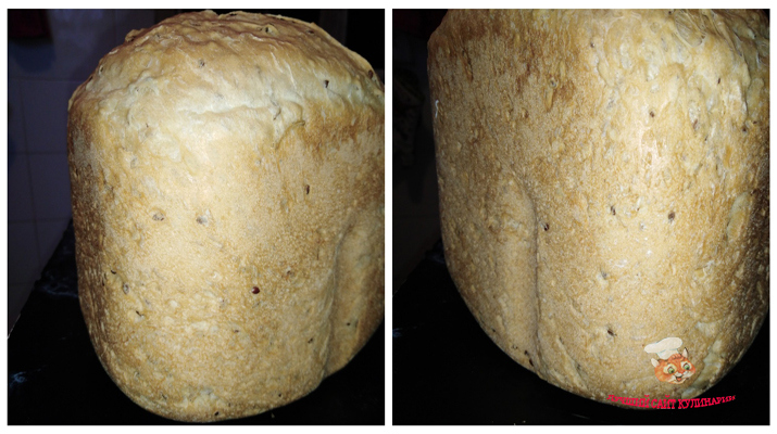 hleb-so-lnom-v-hlebopechke