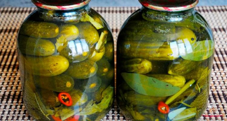 ogurci-s-limonkoi-na-zimu6