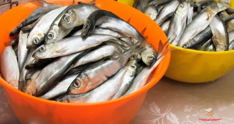 domashnie-konservi-iz-melkoi-ribi