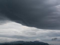 ろうと 副変種 雲分類