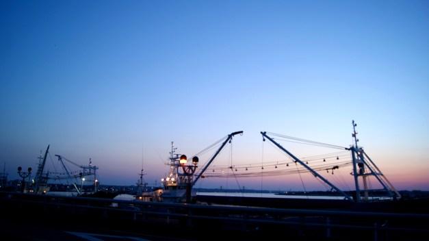 港の景色がきれい!
