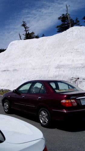 分かるかなこの雪の高さ