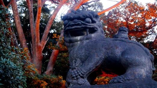 靖国神社、やっと普通サイズがいた