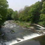 ポイント探索(1)|木曽川水系 ルアーフィッシング