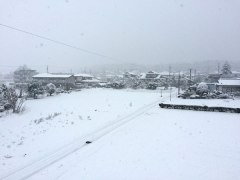 141216雪景色02
