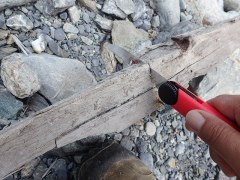 160807三峰川薪を切る