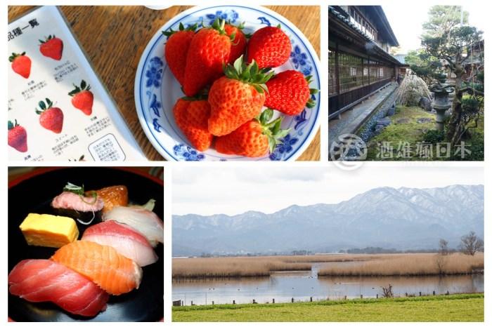 快速規劃新潟市周邊自駕一日遊-白根風箏 仙貝製作體驗 採草莓 北方文化博物館