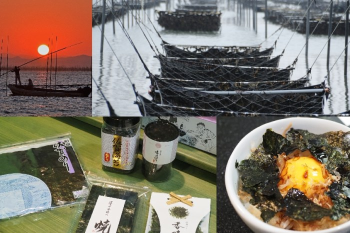佐賀海苔 米其林級餐廳一致推薦 來自有明海的恩惠 -海苔製程 評鑑 海苔料理 美味秘訣