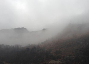 霧に煙る山々