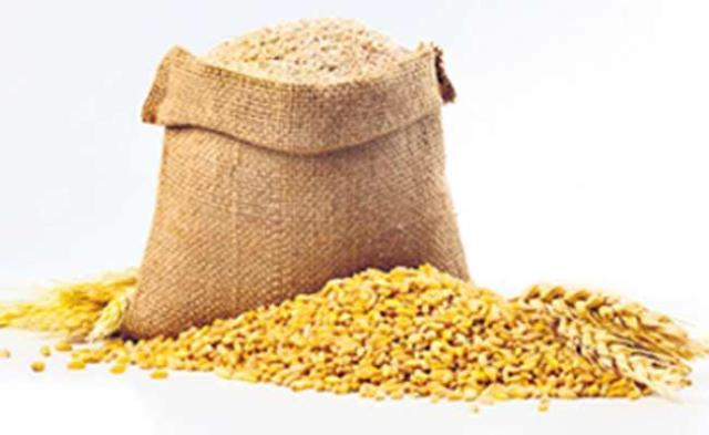 Nutritional Contents And Medicinal Properties Of Wheat - Sakshi