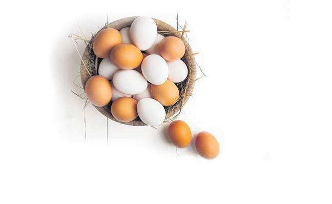Brown Colour Eggs Vs White Eggs: Do You Know These Facts - Sakshi
