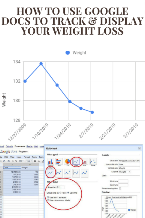 How to Use Google Docs to Track and Display Your Weight Loss - Here's a great way to create a spreadsheet tool using Google Docs, that tracks your weight loss progress that also allows you to share your progress with your blog readers in a nifty little chart. #weightloss #weightlossmotivation