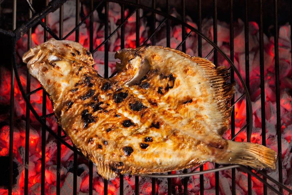 Turbó Salvatge, la joia de la cuina del peix a la brasa