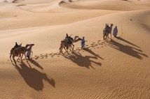 Men Leading Camels in Desert