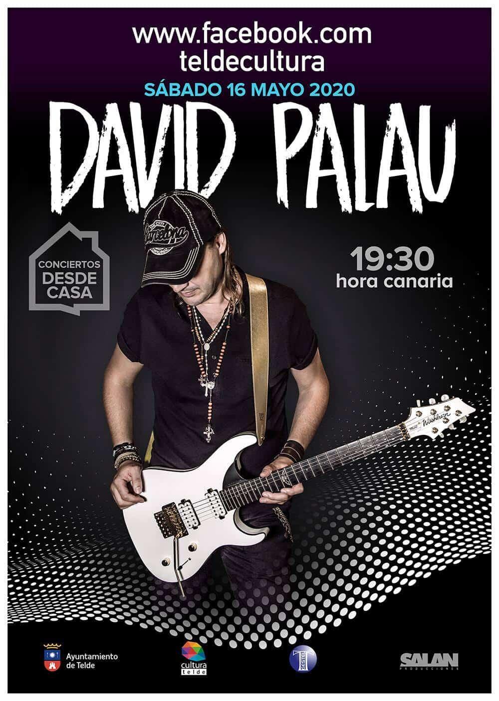 Concierto Online en directo de David Palau
