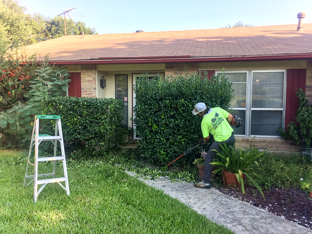 Landscaping - Shrub Trimming in San Antonio
