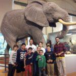En el museo de Ciencias Naturales
