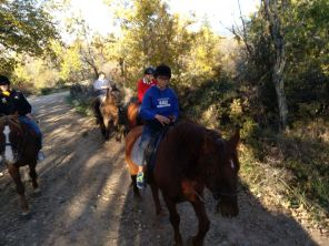 A caballo por la pradera (5)