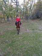 A caballo por la pradera (6)