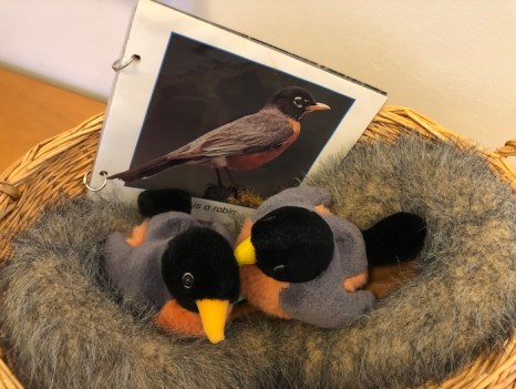 A photo of plush Robins sitting on their eggs, in their nest.