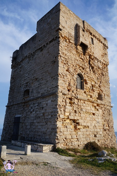 Lo spettacolo di Torre Palane
