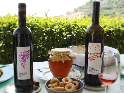Le Vigne di Raito Wine Tour