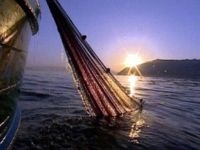 Tour in Campania - Lamparata Marina di Camerota