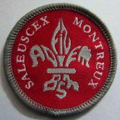Badge de Brigade
