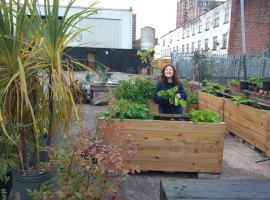 """""""It's also about self and community care"""" – Muddy Millers community garden opens at Islington Mill"""