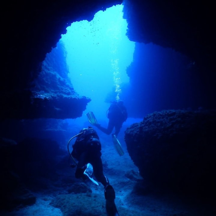 Leisure diving and fun dives with S'Algar Diving in Menorca