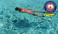 Guided snorkeling and boat excursions | S'Algar Diving, Menorca