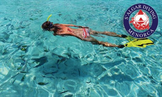 Guided snorkelling and boat excursions | S'Algar Diving, Menorca