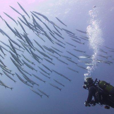 Sites de plongée à Minorque