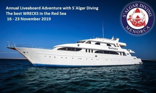 S´Algar Diving Menorca. Rotes Meer Safari November 2019