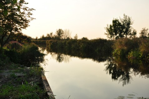 water channel next to the farm