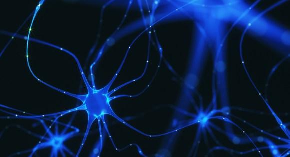 Cognitive Science Minor | Salisbury University