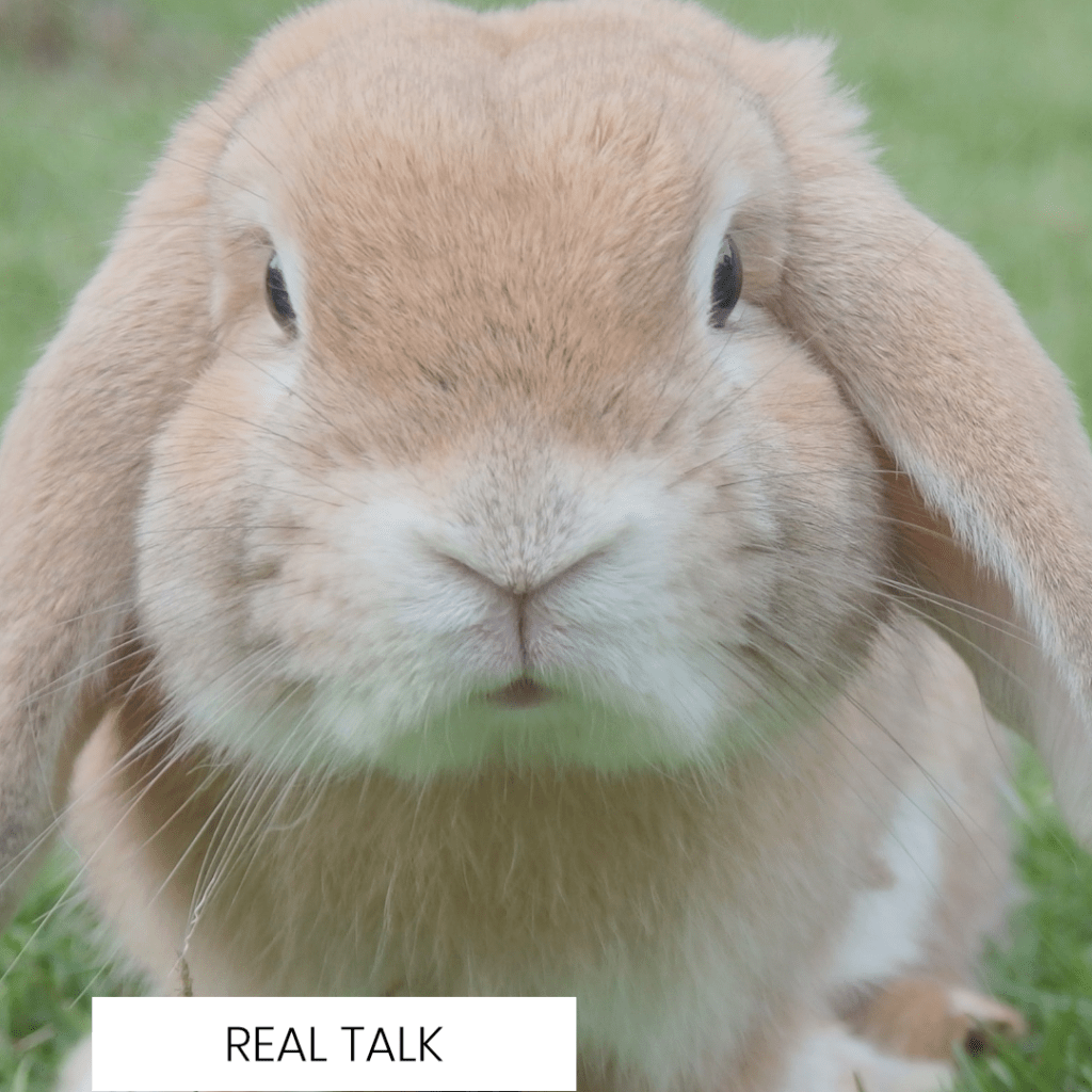 WHAT DOES CRUELTY FREE MAKEUP ACTUALLY MEAN