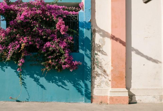 Granada-Nicaragua-(1-of-1)-5
