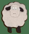 SA_sheep