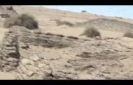 اشتباكات مسلحة بين أجهزة الأمن ومهربين في مديرية تبن بلحج