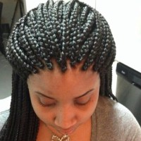 Medium Single Braids Pictures | Short Hairstyle 2013