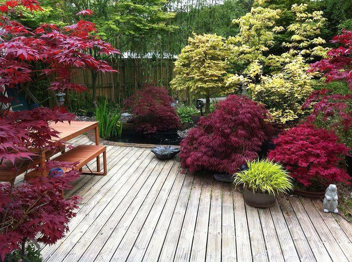 jardin japonais sur terrasse salon de