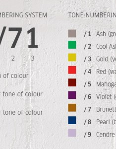 Discover colour touch by wella salons direct also hair color numbering system the best rh haircolordnet