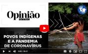 Povos Indígenas e a Pandemia de Coronavírus, by M. Carneiro da Cunha (4-23-20)