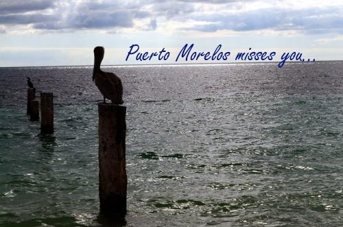 Puerto Morelos Misses You