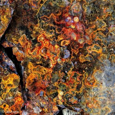 Corroded metal becomes fabric design