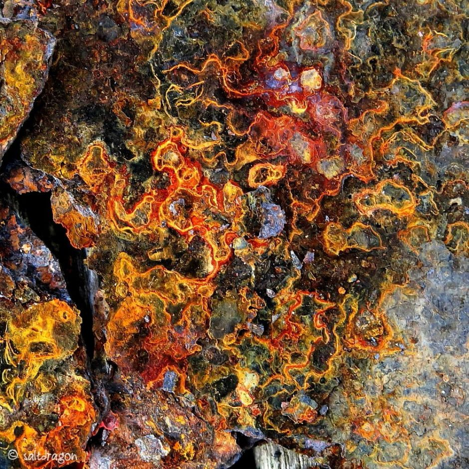 "Image called ""Embroidered rust"""