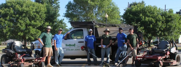 salter lawn care and landscape
